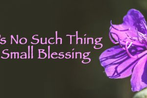 There's No Such Thing As A Small Blessing