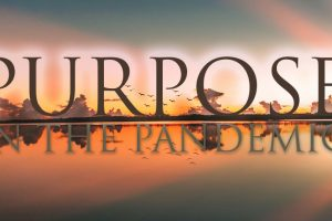Purpose in the Pandemic